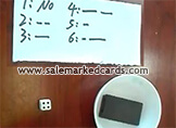 GS electronic dice